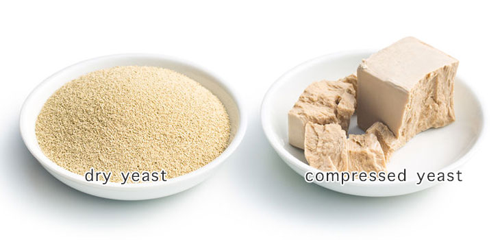 Dry and compressed yeast: illustrated