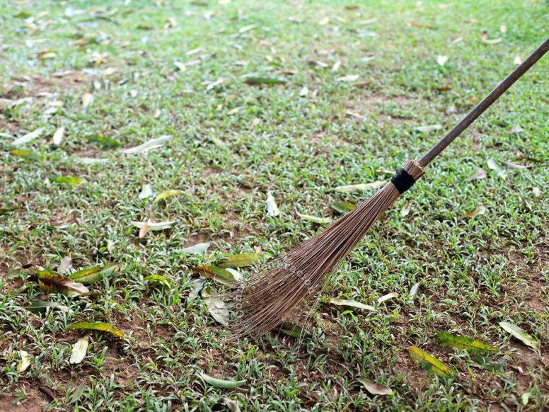 Broom made with coconut fronds